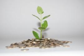 Ganar dinero vendiendo chatarra y ayudar al medioambiente